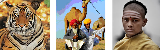 Heritage Rajasthan Tour - Book Online Delhi to Rajasthan Heritage tour by Car and Driver with Hire Taxi India & get best deals Rajasthan tour package from Delhi.
